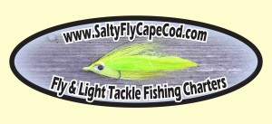 Fly &amp; Light Tackle Fishing Charters