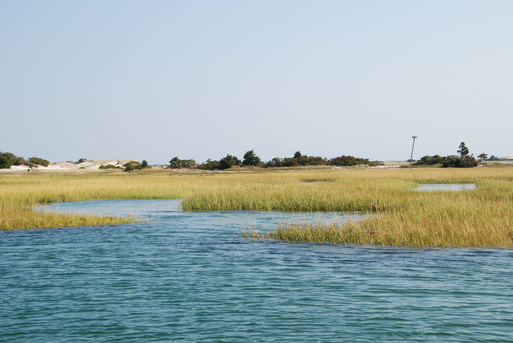 Osprey Nest in Barnstable Harbor Marsh