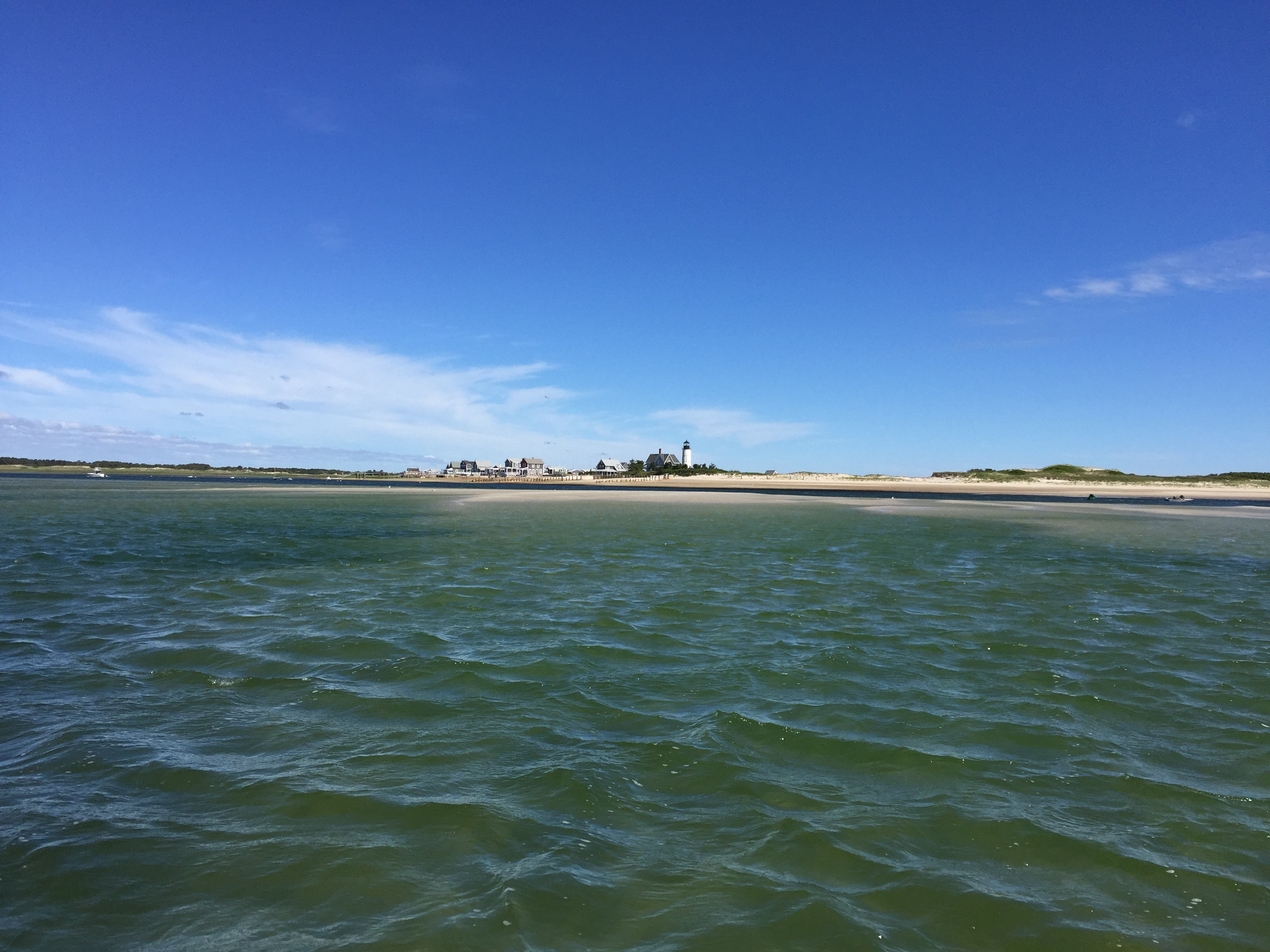 Fishing reports salty cape lobster house for Cod fishing ri