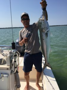 John's Big Bluefish