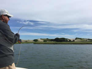 Cape Cod Fly Fishing