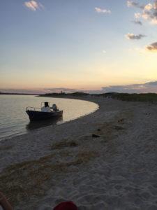 Sandy Neck Beach Picnic