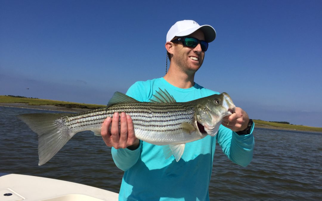 Fall Striper Blitz