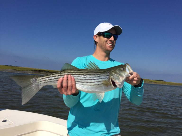 September Striper Blitz