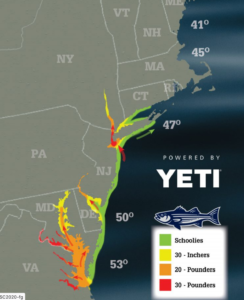 On The Water Magazine Striped Bass Migration Map